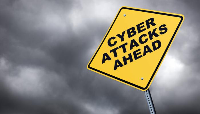 protector vormen cybercrime